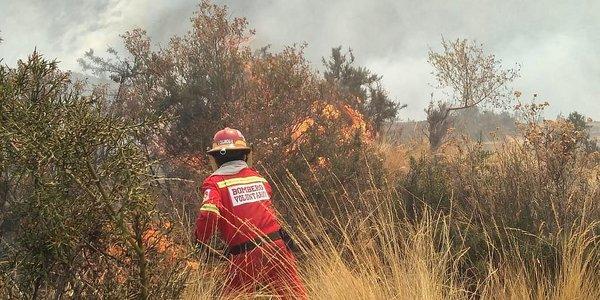 Fiscalía investiga 50 casos de incendios forestales en Cusco