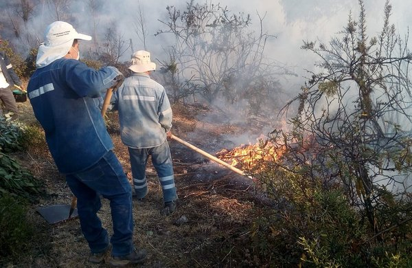 Incendio forestal en el Parque Arqueológico de Sacsayhuamán (FOTOS)