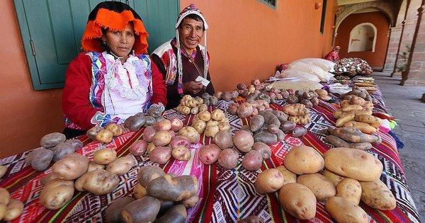 Buscan impulsar cadenas productivas en toda la provincia de Cusco